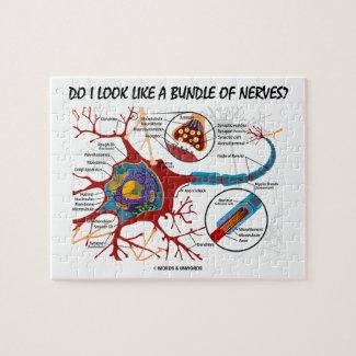 Do I Look Like A Bundle Of Nerves? Neuron Synapse Puzzle