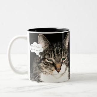 Do I look like I care? Mug