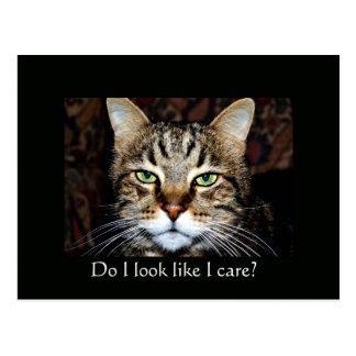 Do I look like I care? Postcard