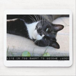Do Not Be Jaded Funny Cat Mouse Pads
