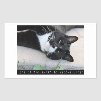 Do Not Be Jaded Funny Cat Rectangular Sticker