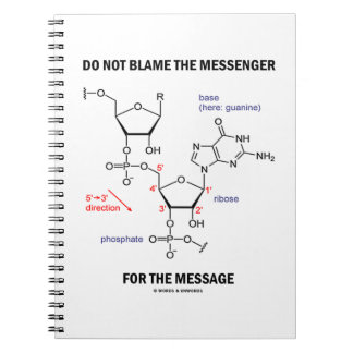 Do Not Blame The Messenger For The Message Notebook