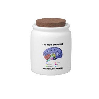 Do Not Disturb Brain At Work (Anatomical Humor) Candy Dish