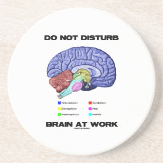Do Not Disturb Brain At Work (Anatomical Humor) Coaster