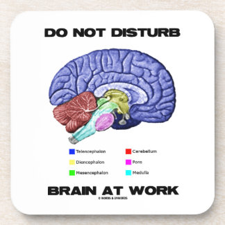 Do Not Disturb Brain At Work (Anatomical Humor) Drink Coasters