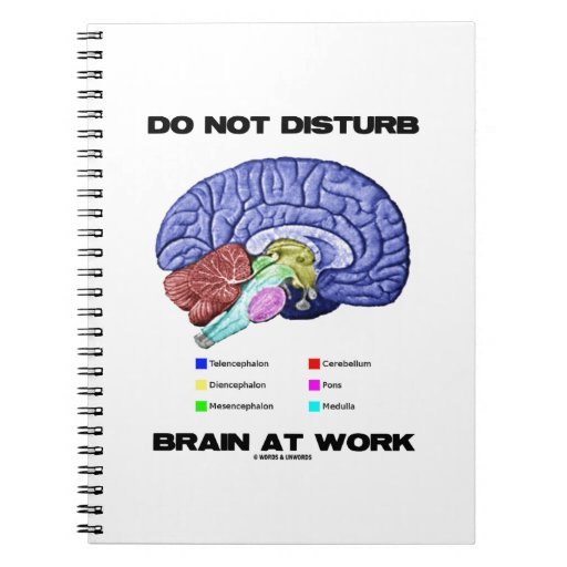 Do Not Disturb Brain At Work (Anatomical Humor) Note Book