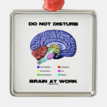 Do Not Disturb Brain At Work (Anatomical Humor) Christmas Ornaments