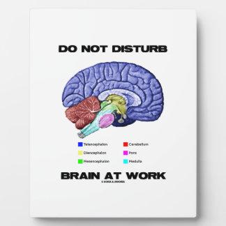 Do Not Disturb Brain At Work (Anatomical Humor) Plaque