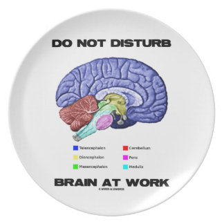 Do Not Disturb Brain At Work (Anatomical Humor) Dinner Plates