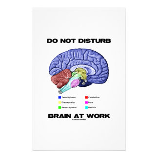 Do Not Disturb Brain At Work (Anatomical Humor) Stationery