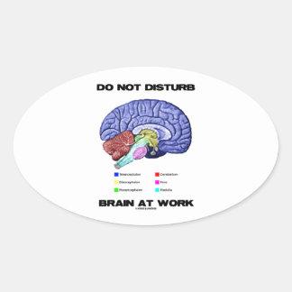 Do Not Disturb Brain At Work (Anatomical Humor) Oval Sticker