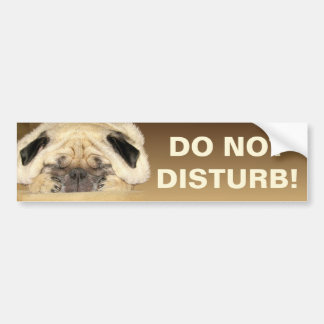 Do Not Disturb Bumper Sticker