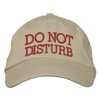 Do Not Disturb by SRF Embroidered Baseball Cap