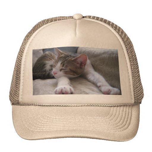 Do Not Disturb Cap Hat
