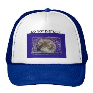 Do Not Disturb Cat Photo Baseball Cap Trucker Hat