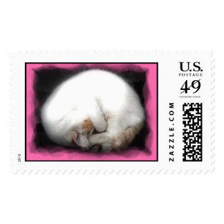Do not Disturb Cat Stamps