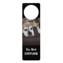 Do Not Disturb Dog Door Hanger