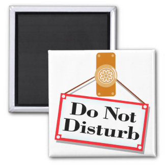 Do Not Disturb - Magnet