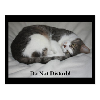 Do Not Disturb! Postcard