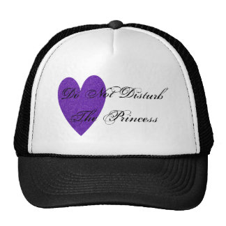 Do Not Disturb The Princess Glitter Heart Hat