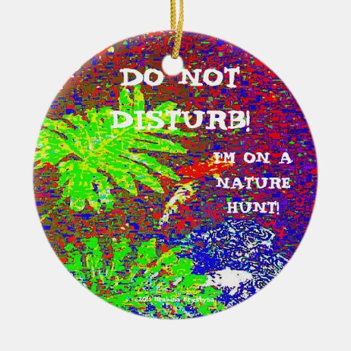 DO NOT DISTURN! I'M ON A NATURE HUNT! CERAMIC ORNAMENT