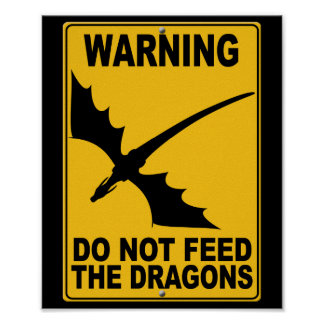 Do Not Feed the Dragons Poster