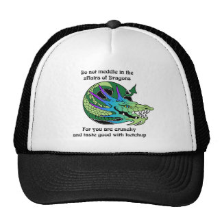 Do Not Meddle in the Affairs of Dragons Trucker Hat