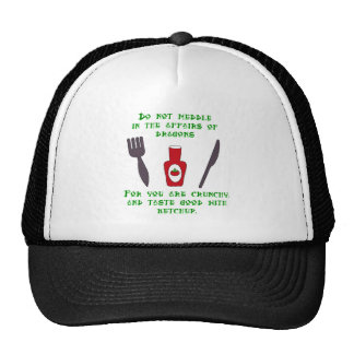 Do Not Meddle In The Affairs of Dragons Mesh Hat