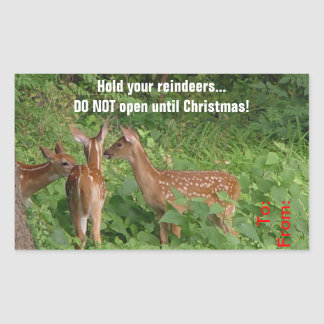 Do Not Open Until Christmas Deer Gift Tag Sticker