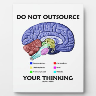 Do Not Outsource Your Thinking (Brain Anatomy) Plaque