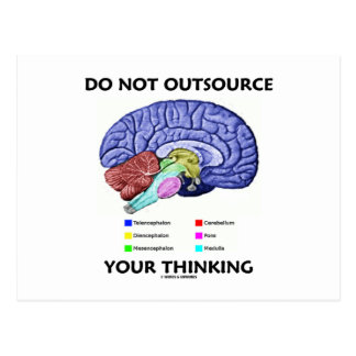 Do Not Outsource Your Thinking (Brain Anatomy) Postcard