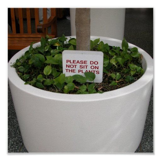do not sit on plants poster