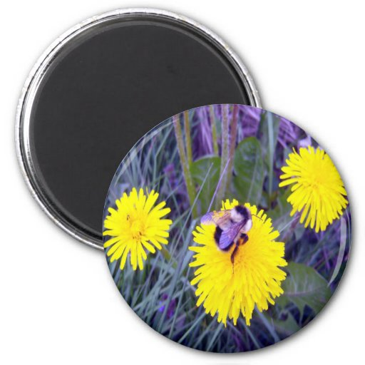 Do The Hop Button 2 Inch Round Magnet