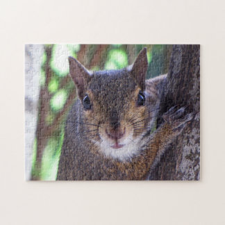 Do you have more nuts? jigsaw puzzle
