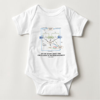 Do You Know About Circulation In Macroeconomics? Shirt