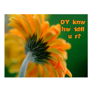 do you know how wonderful you are postcard