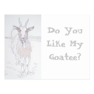 Do you like my goatee? postcard