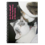 Do You Mind? We're Having a Moment Spiral Note Books