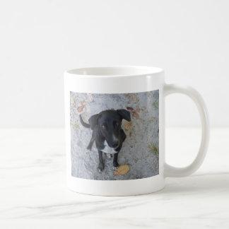 Do you notice me? coffee mug