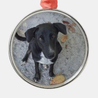 Do you notice me? metal ornament
