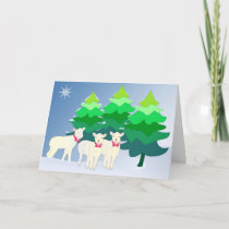 Do you see little sheep? holiday card