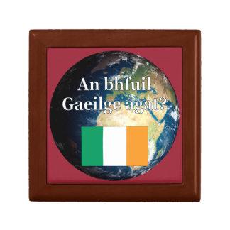 Do you speak Irish? in Irish. Flag & Earth Trinket Boxes