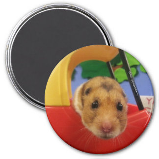Do you want to go for a ride? 3 inch round magnet