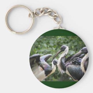 Do You Zoo? Straw-necked Ibis Keychains