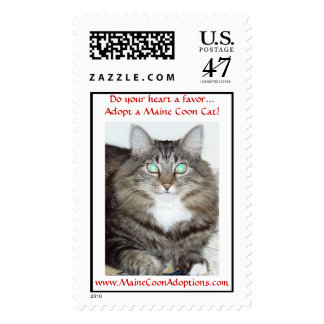 Do your heart a favor...Adopt a Maine Coon Cat! Postage