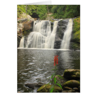 Doanes Falls Waterfall and Cardinal Flower Card