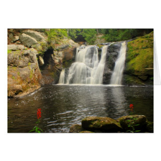 Doanes Falls Waterfall and Cardinal Flowers Card