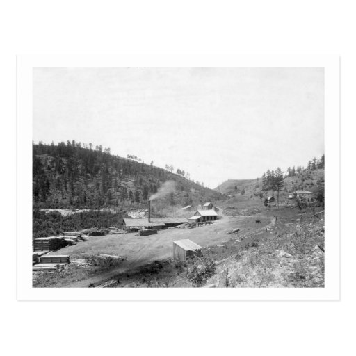 Dobbin's Saw Mill in the Black Hills Photograph Postcards