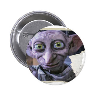 Dobby 1 pin