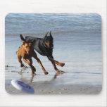 Doberman and Rhodesian Ridgeback - Frisbee Play Mouse Pad